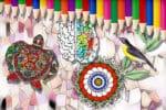 Coloring Benefits header image