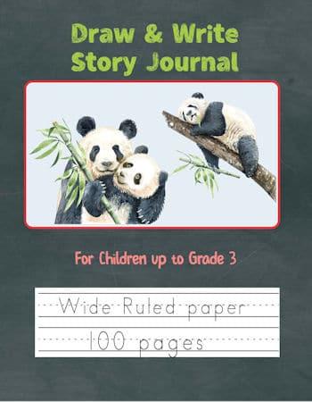Panda Draw & Write Cover